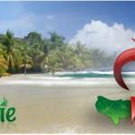 Comprendre la réalité environnementale haïtienne