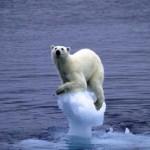 Réchauffement Climatique dernières news
